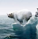 Як нас вбиває глобальне потепління
