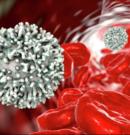 Низький рівень лімфоцитів в крові серйозно підвищує ризик смерті